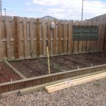 Vegetable garden in progress