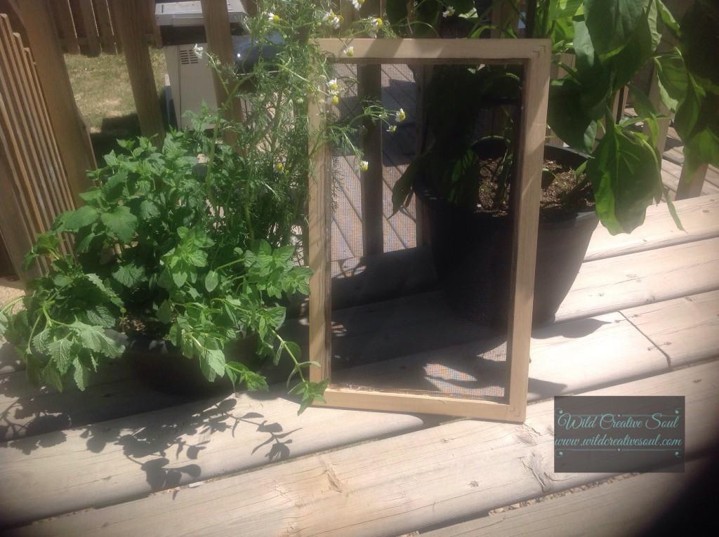 Herb drying screen