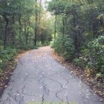 The nature path behind our home.